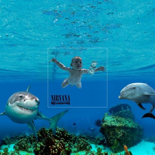 small_album_covers_-_the_bigger_picture2
